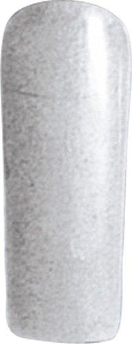 レッドネイルズ NFS カラージェル シルバー 3g