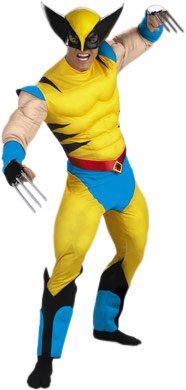 Adult X-Men Wolverine Halloween Costume