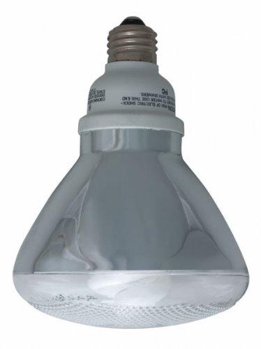 Feit Electric ESL23PAR38T 23-Watt Compact Fluorescent Par 38 Outdoor Bulb (120-Watt Incandescent Equivalent) (Par 38 Motion Sensor compare prices)