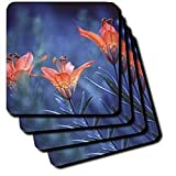 Alberta, Jasper National Park. Wood lily flowers-CN01 BJA0004 - Janyes Gallery - Set Of 8 Ceramic Tile Coasters