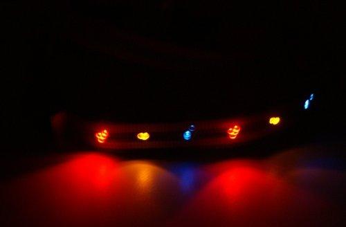 LED Beleuchtetes Hundegeschirr BLAU Gr. L = 40-65cm - RBrothersTechnologie