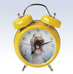 Mark Feldstein Wacky Wakers Farm Duck Alarm Clock