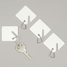 Buddy Products Blank Plastic Key Tags, White, Set of 100 (0017)