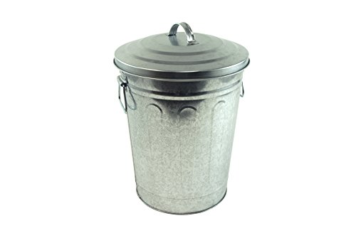 Steven Raichlen Best of Barbecue Galvanized Charcoal and Ash Can with Lid -- SR8012 (10 Gallon Galvanized Trash Can compare prices)