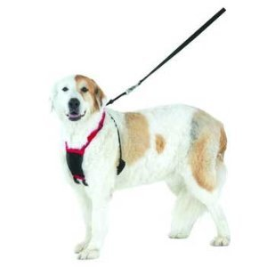 Sporn No-Pulling Mesh Control Harness, Large / XL - Blue