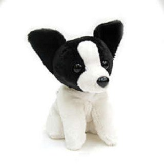 "Stuffed Mini Papillion 6"" - 1"