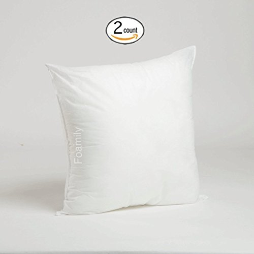 Set of 2 - 20 x 20 Premium Hypoallergenic Stuffer Pillow Insert Sham Square Form Polyester, Standard / White - MADE IN USA (Pillow Insert Hypoallergenic compare prices)