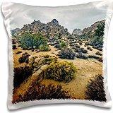photography-landscape-hidden-valley-landscape-16x16-inch-pillow-case
