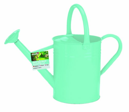 Gardman 8335 Galvanized Steel Watering Can, Duck Egg Blue, 1-Gallon (Blue Watering Can compare prices)
