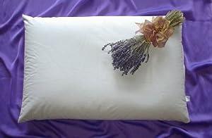 "Beans72 Organic Aromatherapy Buckwheat Pillow - Queen Size (20"" x 30"")"