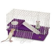 Super Pet Deluxe My First Home, Pet Rat - Buy Super Pet Deluxe My First Home, Pet Rat - Purchase Super Pet Deluxe My First Home, Pet Rat (Super Pet, Everything Else, Categories, Other Products)