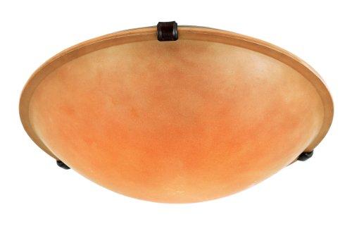 Trans Globe Lighting 58704 Rob 3-Light Flush Ceiling Light, Rubbed Oil Bronze