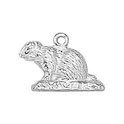 Sterling Silver Ground Hog Charm