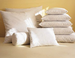 White Feather/Down Pillow Forms White 12
