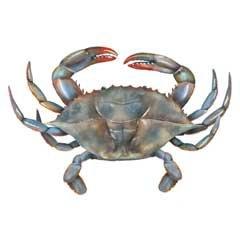 Blue Crab Towel Set