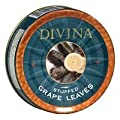 Grapeleaves, Stuffed, Dolma, 4.4 # (pack of 6 ) from DIVINA