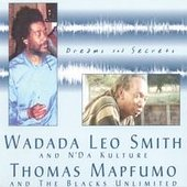 Dreams & Secrets by Thomas Mapfumo and Wadada Leo Smith