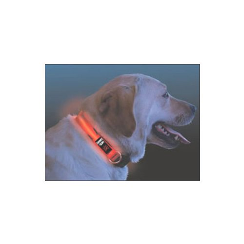 NEW Nite Dawg - LED Dog Collar - MEDIUM, 13-18