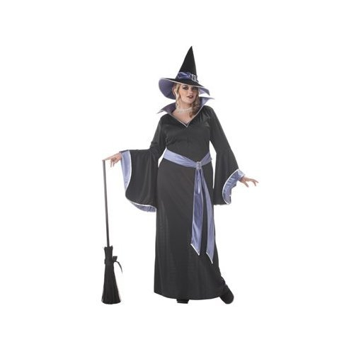 Plus Size Women Incantasia, The Glamour Witch Costume WITH HAT (Broom not included)