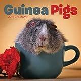 Carousel Calendars Guinea Pigs M / Carous: Mini