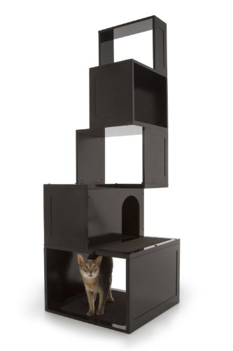 cat beds and furniture