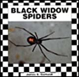 img - for Black Widow Spiders book / textbook / text book