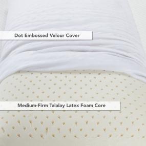 Talalay Medium Firm Pillow