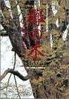 欅の木 / 内海 隆一郎 のシリーズ情報を見る