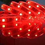 Waterproof FLexible LED Strip, 5050 SMD Crystal Ribbon Red 12V(5M/Reel) 6200K,5050R