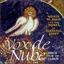 Vox de Nube (Voice from the Cloud)