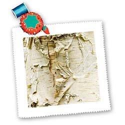 3dRose qs_95398_10 Paper Birch Tree Washington Arboretum Seattle Darrell Gulin Quilt Square, 25 by 25-Inch