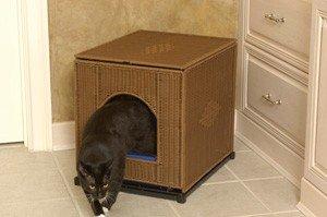Decorative Litter Box Enclosure Color: Dark Brown, Size: Jumbo (20