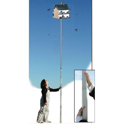Purple martin house pole