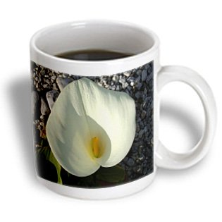 Taiche Photography Calla Lilies - Overhead View White Calla Lily With Pebbles Calla Lily Symbolic Of Marriage - 11Oz Mug (Mug_167523_1)