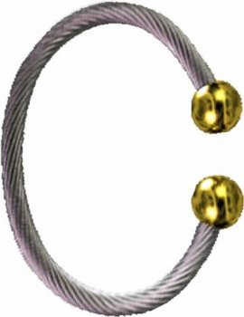 Qi(chi) Ionic/ Biomagnetic Bracelet Two Tone M