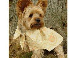 Risotto Fluffy Lemon Meringue Dog Coat (XSmall)
