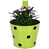 TrustBasket Single Pot Railing Planter - Green With Dots