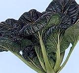 三景雪菜[菜類]【タネ】2dl