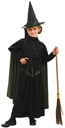 Wicked Witch of the West Costume - Large