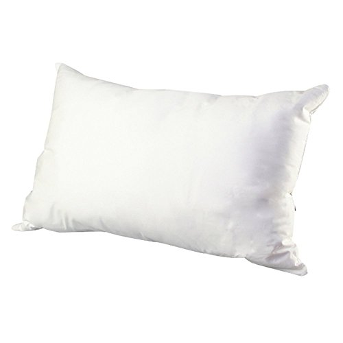 Serta Perfect Sleeper Down Alternative Pillow (Serta Pillow Down Alternative compare prices)