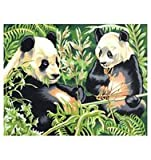 Reeves Panda Acrylic Painting Set by Numbers, Large