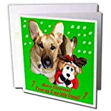 Sandy Mertens Christmas Dog Designs - Christmas German Shepherd and Friend - Greeting Cards-12 Greeting Cards with envelopes ~ Sandy Mertens