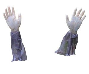 Forum Novelties Zombie Arm Lawn Stakes, 2-Pieces