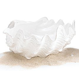 Sanibel Sands Seashell Design Bowl Beach Kitchen And Home Decor - Buy Sanibel Sands Seashell Design Bowl Beach Kitchen And Home Decor - Purchase Sanibel Sands Seashell Design Bowl Beach Kitchen And Home Decor (Sanibel Sands Collection, Home & Garden, Categories, Kitchen & Dining, Tableware, Serveware, Serving Bowls & Tureens)