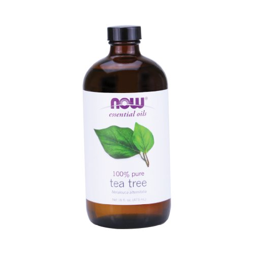 Now Foods Tea Tree Oil - 16 oz. 5 Pack