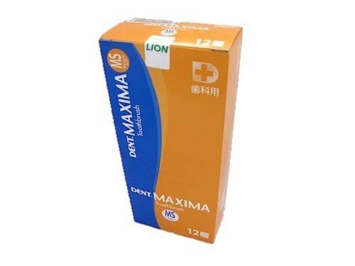 デント マキシマ ニュー MS ミディアムソフトタイプ 12本セット