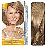 Advance Techniques Professional Hair Colour - 8.1 Medium Ash Blonde