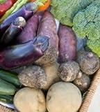 【NPO法人かごしま食の家族】季節の野菜宅配便「ファミリーセット」(送料込・農薬/除草剤フリー)