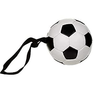 Hyper Medium Soccer Dog Toy with Handle