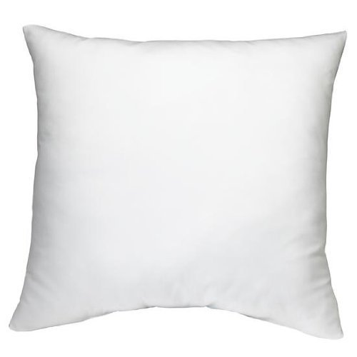 "Discover Bargain 18"" X 18"" Square Poly Pillow Insert (2, White)"